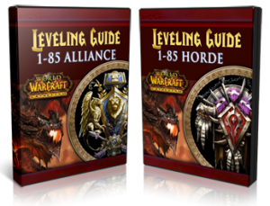 Top cataclysm leveling guides